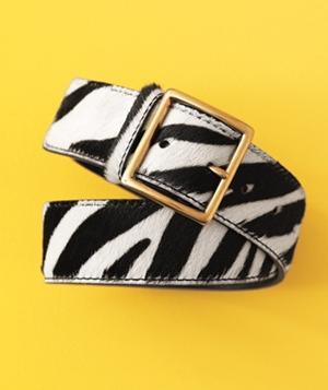 zebra-belt_300