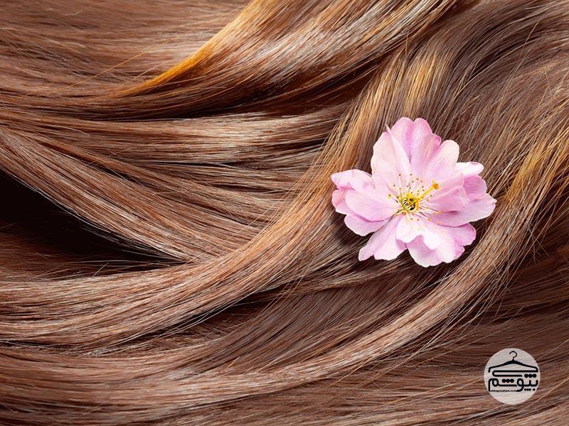 مراقبت از مو و راهکارهایی برای داشتن موهای پرپشت و درخشان