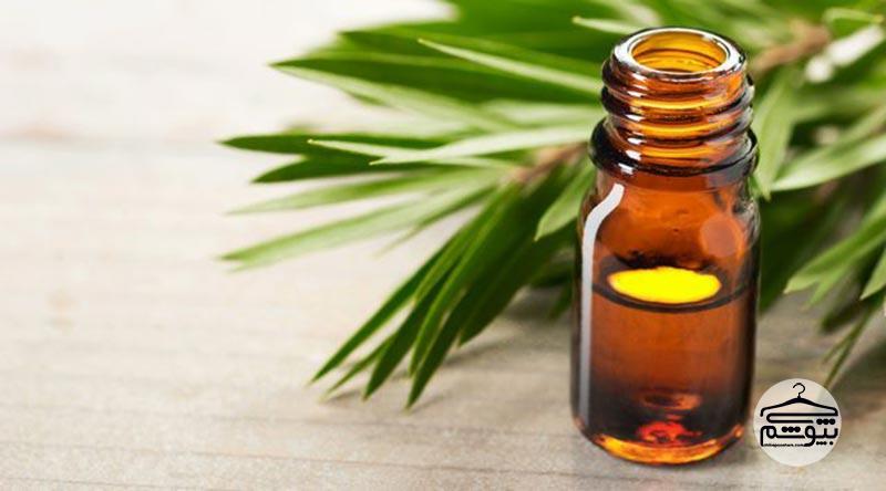 روغن درخت چای و درمان شوره سر