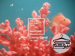 شرکت پنتون رنگ سال ۲۰۱۹ را انتخاب کرد