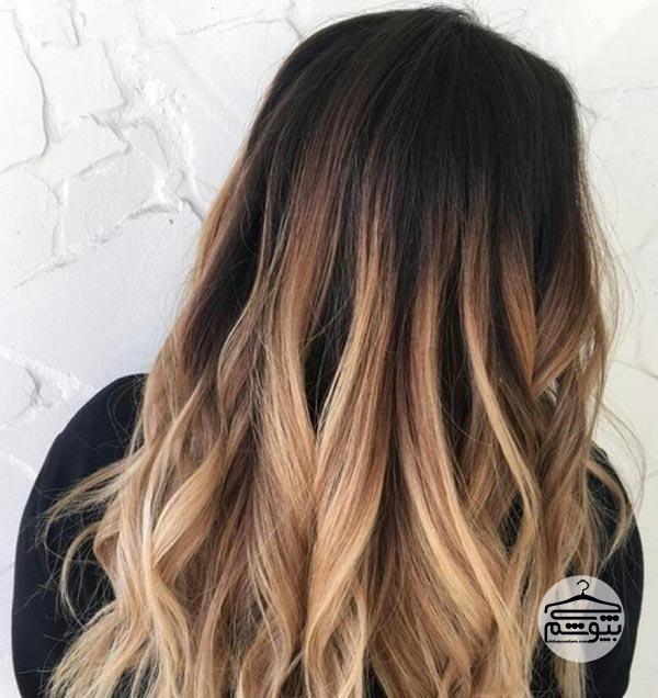 ریشه مو به رنگ شکلاتی و ساقه به رنگ بلوند